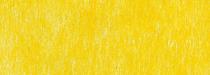 b496 jaune
