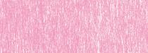 b496 rose