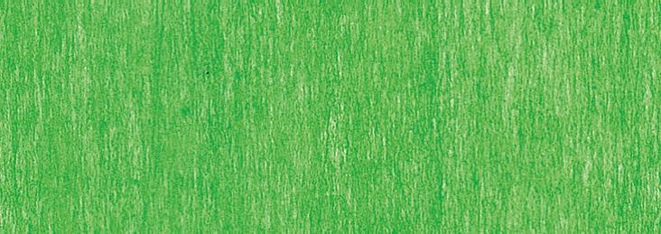 b496 vert pomme