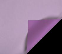 b804 lilas-violet