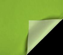b804 vert pomme-vert pastel