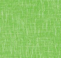 Rouleau Bulle Tissu 0,60x50m Vert Anis